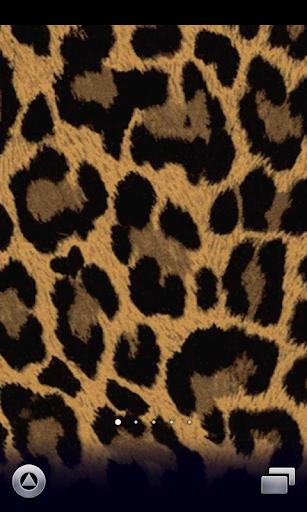 ヒョウ柄壁紙♪【スマホ待ち受け豹柄壁紙】