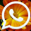 صور واتس اب رائعة ومنوعة 2014 icon