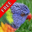 Bird Sounds.. file APK for Gaming PC/PS3/PS4 Smart TV