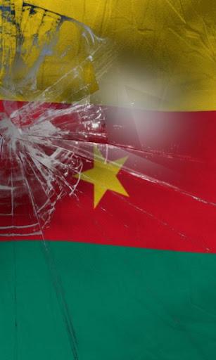 카메룬 국기
