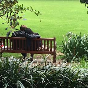 Romance by Manoj Ojha - City,  Street & Park  City Parks ( #theroyalbotanicgarden #sydney #romance #nsw #australia )
