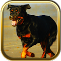 Rottweiler Puzzle Games icon