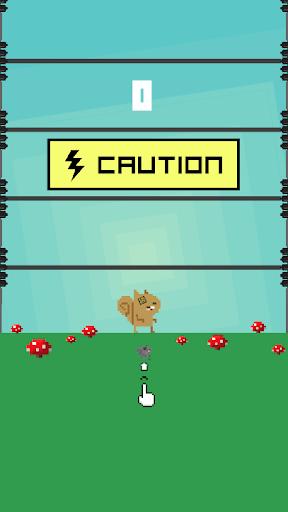 【免費休閒App】Dizzy Squirrel-APP點子
