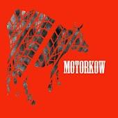 Motorkow