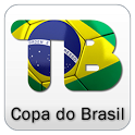 Copa do Brasil 2013 icon