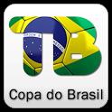 Copa do Brasil 2013 icon