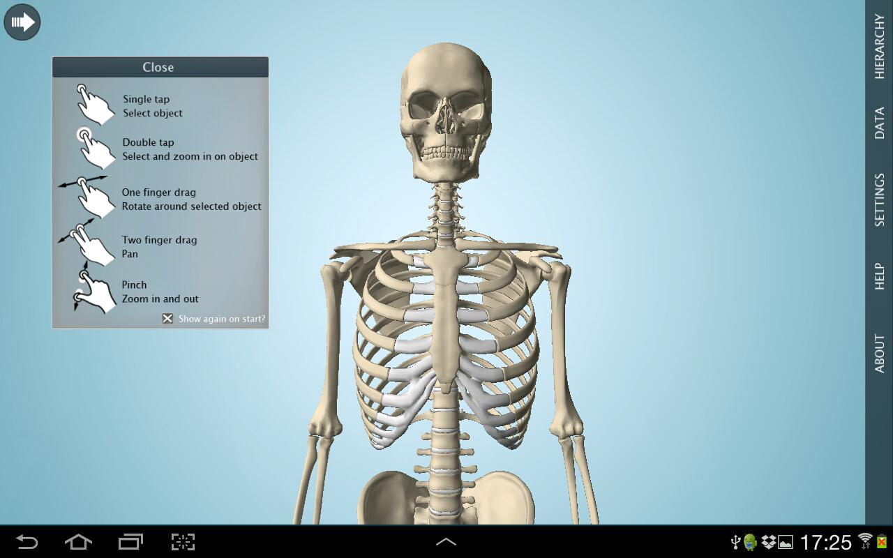 Anatomy 3D - Anatronica- screenshot