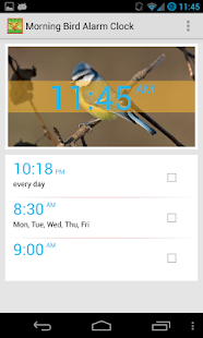 Bird Quiz Alarm Clock- screenshot thumbnail