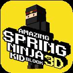Ninja Warrior Ninjago Jump 2