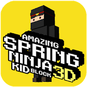 Amazing Spring Ninja Kid Block