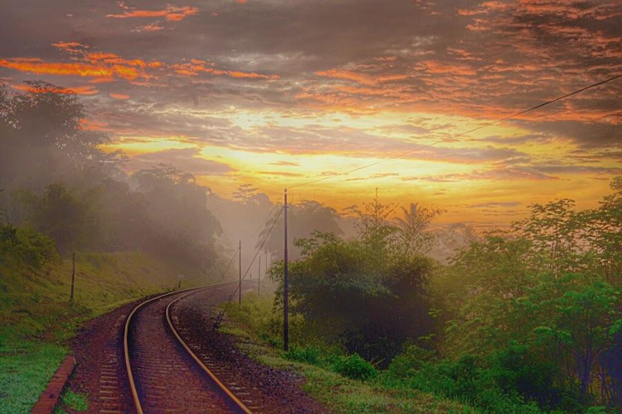 sunrise at railway by Tutun Gunstar - Landscapes Sunsets & Sunrises ( #cirahong,  )