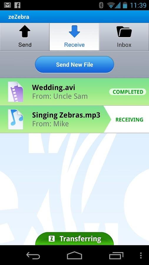 ZeZebra Share big video files - screenshot