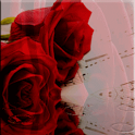 Red Roses Rain Effect LWP icon
