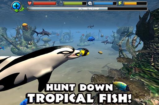 Dolphin Simulator image   4