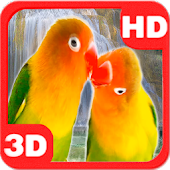 Lovebirds Parrots Waterfall