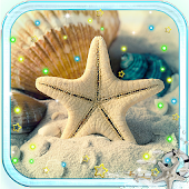 Shells Sea Sand  LWP
