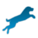 Iron Dog Points Calculator icon