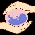 101 Pregnancy Safety Tips Free APK for Bluestacks