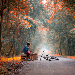 the bike and i  by Anton Subiyanto - People Street & Candids ( child, autumn, street, human interest, children, candid, forest, conceptual, people )