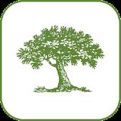 GreenprintMaps