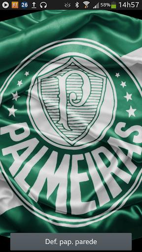 Bandeira Palmeiras 3D LiveWP