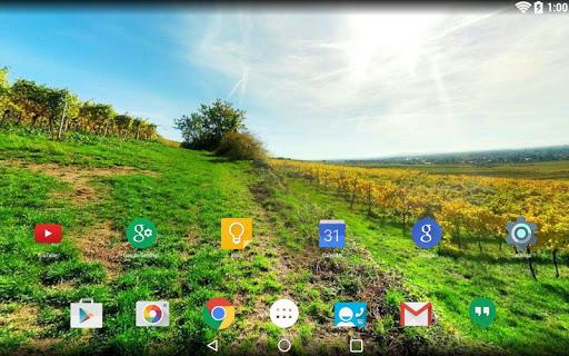 Panorama Wallpaper: Fields