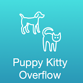 Puppy Kitty Overflow
