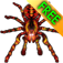 iSpider Free