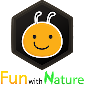 Fun with Nature : Bees
