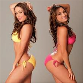 Awesome Nikki Bella Games