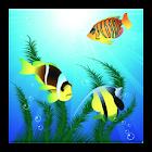 Fish Pond Live Wallpaper icon