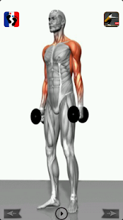 Fitness & Muscle building - screenshot thumbnail