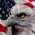 USA Eagle & Flag icon