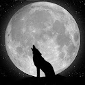 Wolfs Wallpapers icon