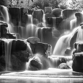 by Scott Padgett - Black & White Landscapes (  )
