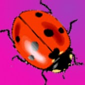 Cute Ladybugs Donation