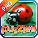 Bugs & Insects Puzzles Pro icon