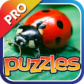 Bugs & Insects Puzzles Pro