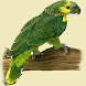 Parrot Glow Live Wallpaper