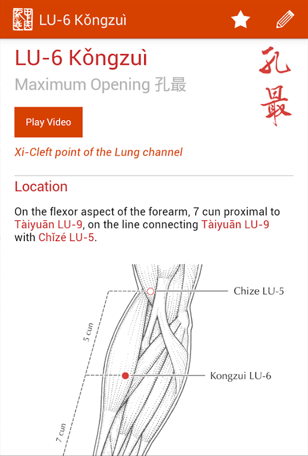 A Manual of Acupuncture- screenshot