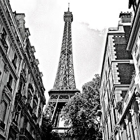 Quite Street in Paris by Christopher Charlton - Buildings & Architecture Statues & Monuments ( paris, eiffel tower, europe, black and white, france, travel )
