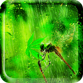 Rain Natural Live Wallpaper