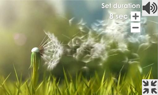 Dandelion Breathing Games