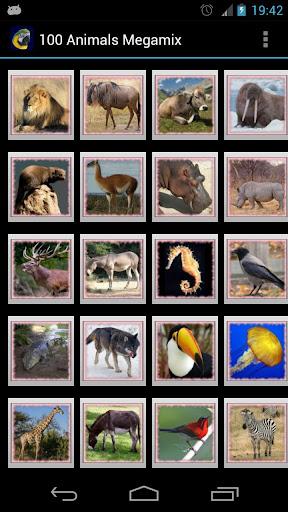 100動物 Megamix
