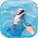 Magic Ripple : Cute Dolphin icon