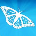 CButterfly logo