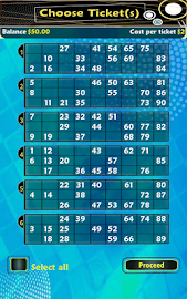 Pocket Bingo Free Screenshot 11