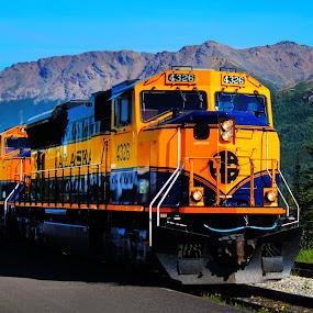 Alaskan Train Line.jpg