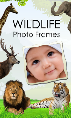 Wildlife Photo Frames - screenshot