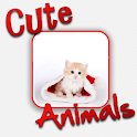 Cute Animals! logo